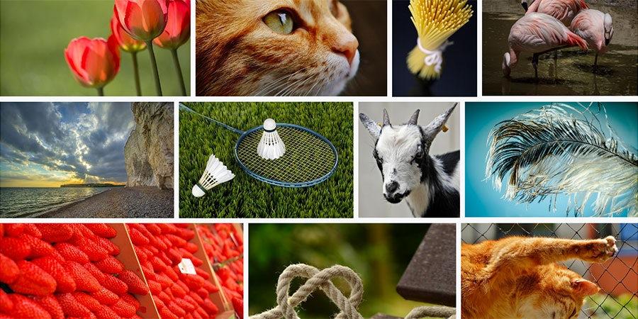 30 πηγές public domain εικόνων και πώς να τις χρησιμοποιήσετε
